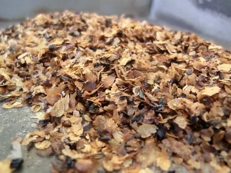 コーヒー豆皮の炭